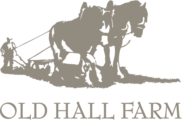 Old Hall Farm | Fun for all the family in the Lake District
